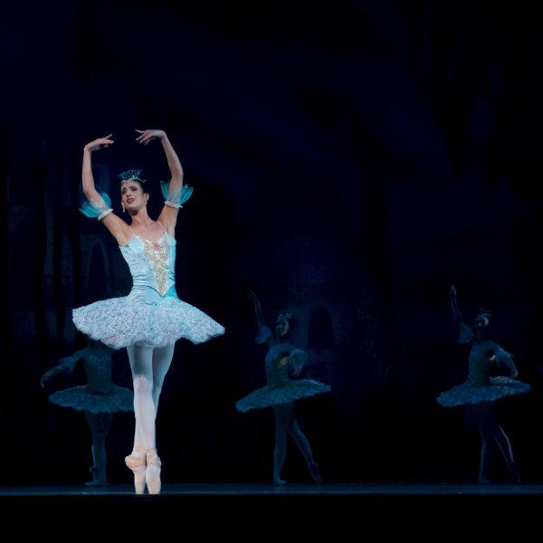 ballet-ballerina-performance-don-quixote-46158.jpeg